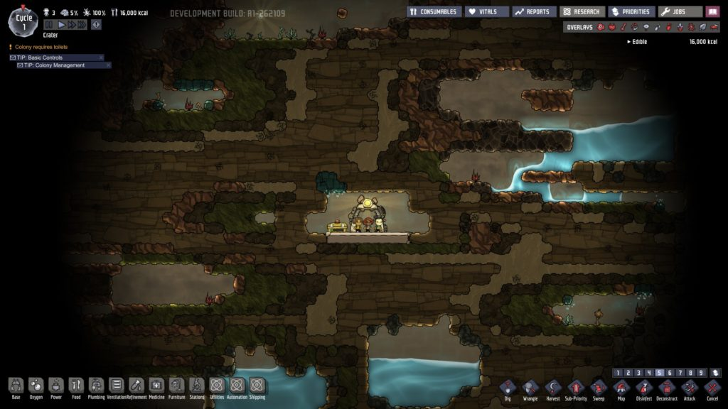 oxygen not included review